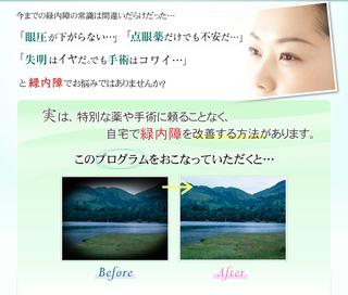緑内障body_02.jpg