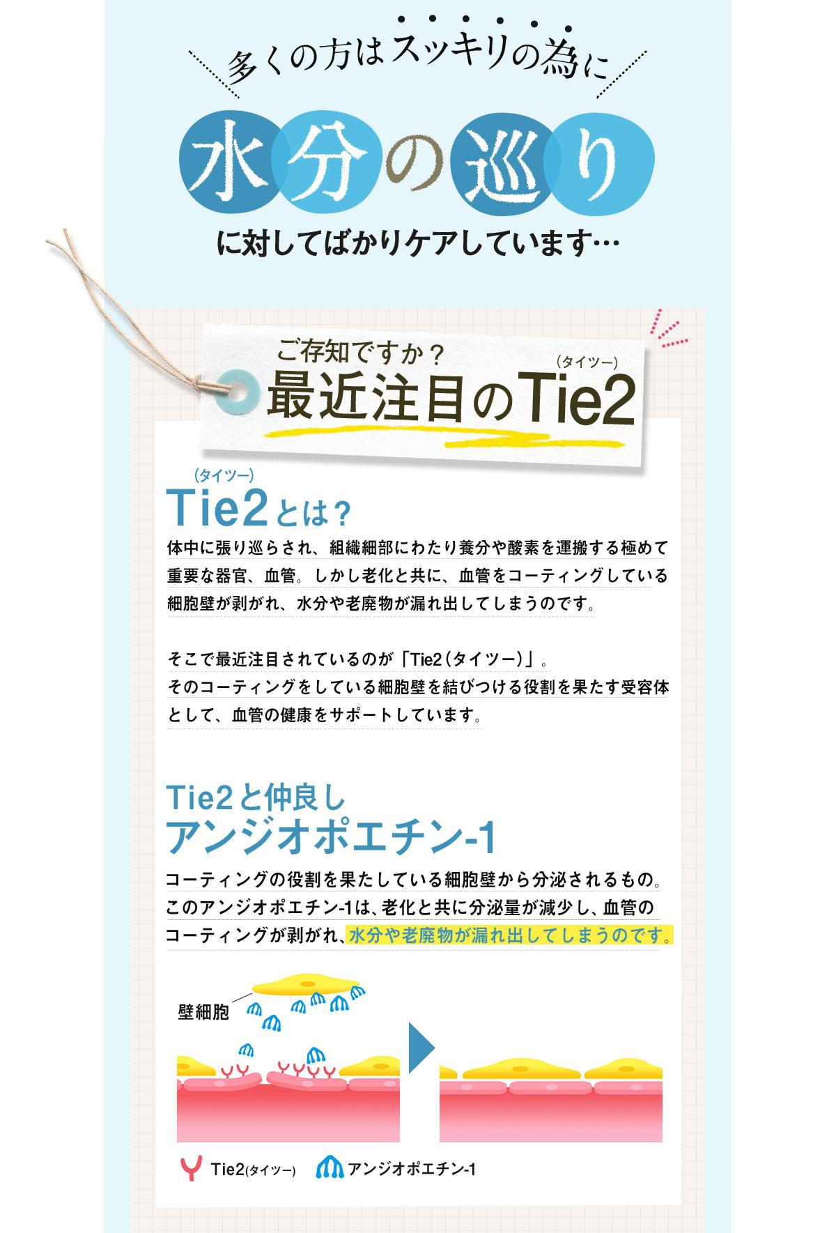image_08.jpg