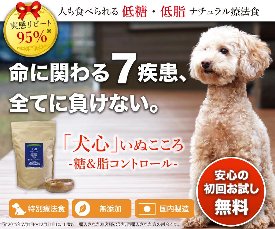 top_image_front.jpg